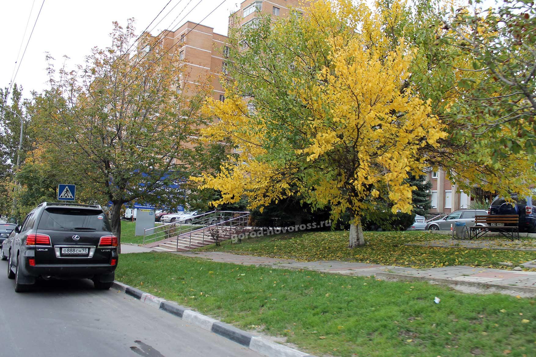 Врача городской больницы 2 белгорода