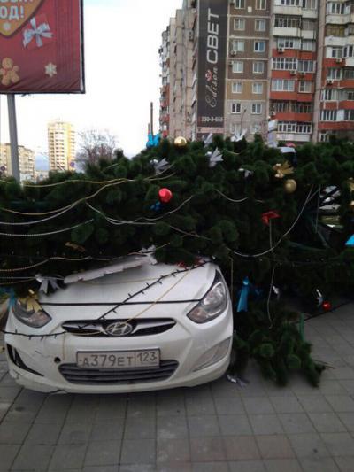 http://gorod-novoross.ru/news_foto/mini/w2n5pycfkklppmksuvihf0i_i6ae3dns9qg-nedjc4r8bma7fl.jpg